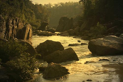 Forêt de Dandkaranya