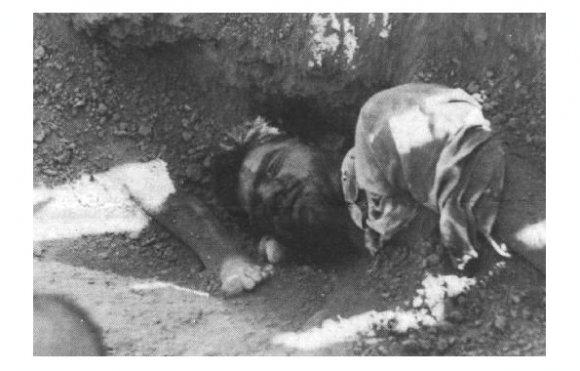 Dépouilles des prisonniers assassinés exhumés par des chiens errants à Khavaran
