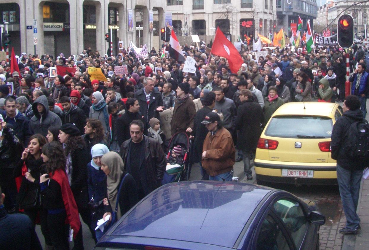 Manifestation pour la Tunisie et l'Egypte, Bruxelles, 6 février 2011