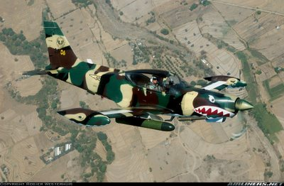 sf-260tp_philippines.jpg