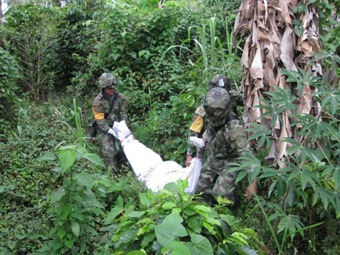 Tame FARC