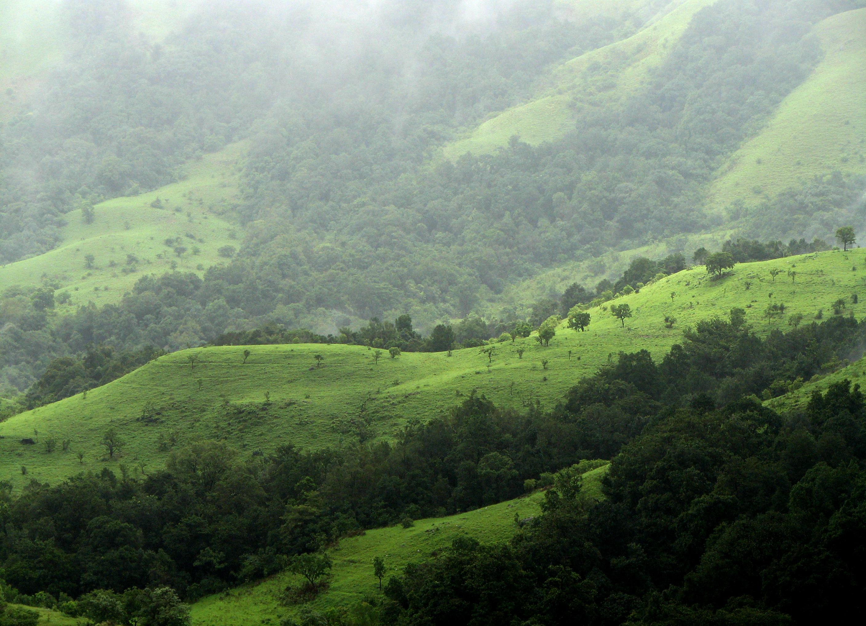 Les Western Ghats, dans le Karnakata