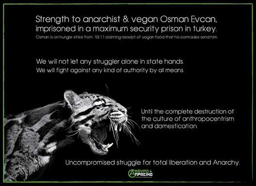 Visuel solidaire de Osman Evcan