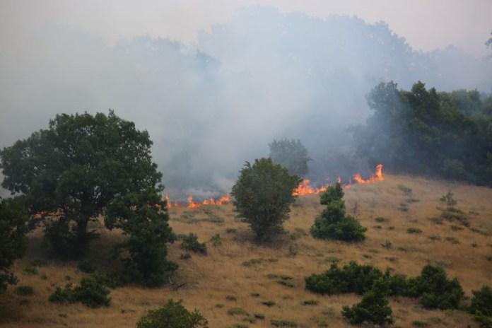 Végétation en feu au Dersim (archive)