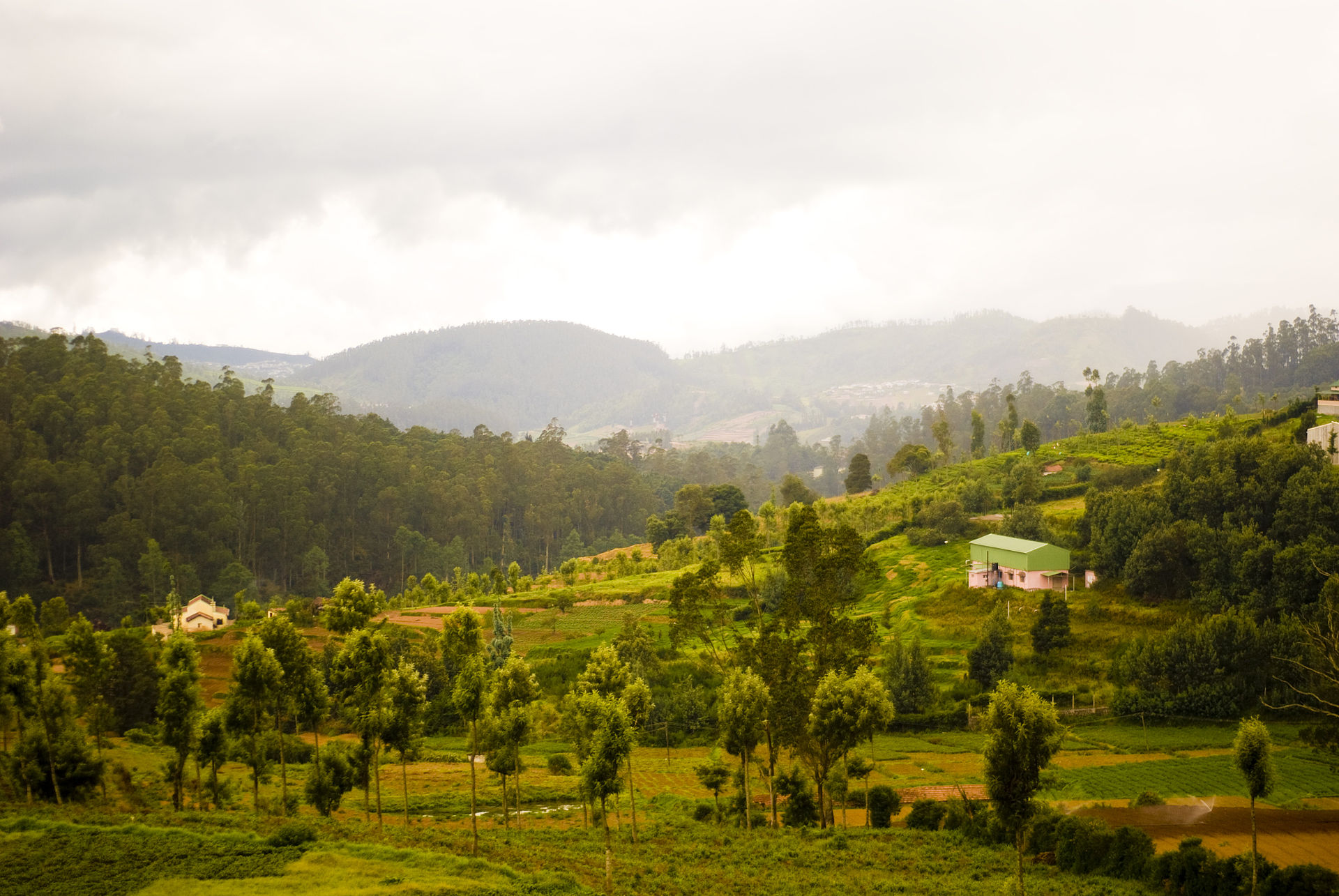 District des Nilgiris
