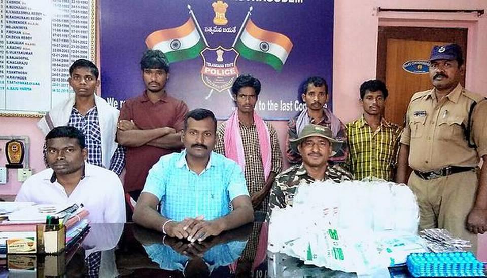Cinq tribaux arrêtés
