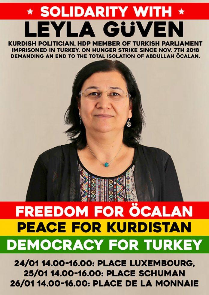 Une affiche de solidairté avec Leyla Güven (archive)
